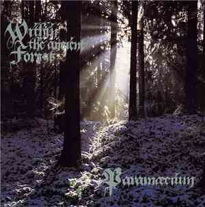 Paramæcium - Within The Ancient Forest